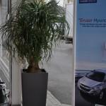 huren-planten-garage3
