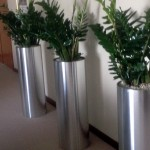 huren-planten-kantoor3
