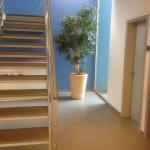huren-planten-kantoor4