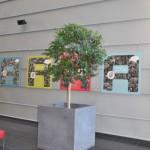 huren-planten-kantoor6
