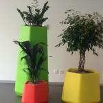 huren-planten-kleur1