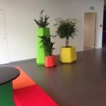 huren-planten-kleur2