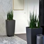 huren-planten-kmo5
