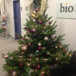 kerstdecoratie1
