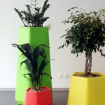 plant-op-kantoor-1