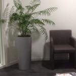 planten-burelen-5