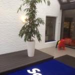 planten-burelen-scala4