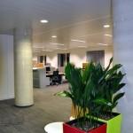 planten-kantoor18