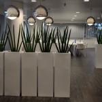 planten-kantoor6