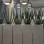 planten-kantoor7