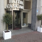 planten-verhuur-hotel