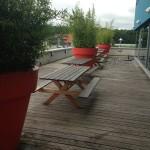 planten-verhuur-terras2