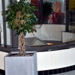 project-planten-zuid7