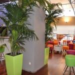verhuur-planten-hall2
