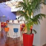 verhuur-planten-hall4